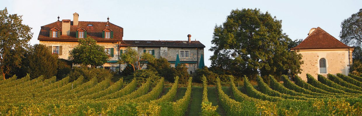 DOMAINE DE CHATEAUVIEUX, A HEAVEN OF TRANQUILITY