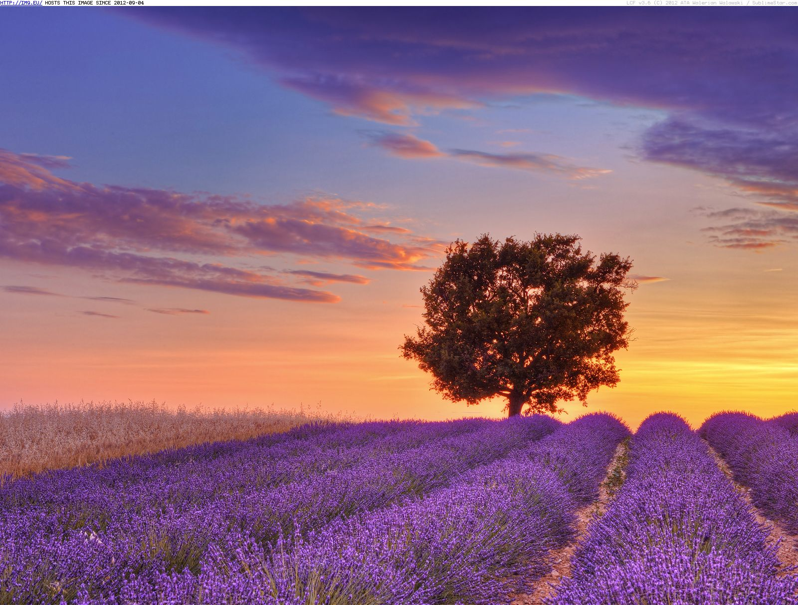 PROVENCE (FRANCE), when you cannot change the world, change the decoration…